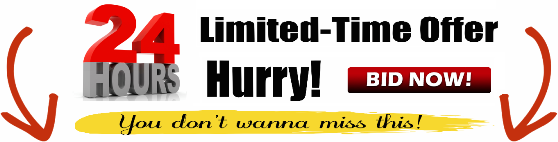 24 HOUR LIMITED TIME OFFER. HURRY! BID NOW!
