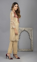 Embroidered and embellished, 2 piece (Shirt and Trouser).
