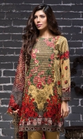 beech-tree-winter-collection-2016-2