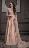 bridal-wear-shadi-valima-2019-4