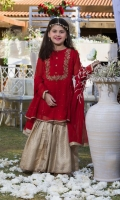 Red chiffon top  Round neckline front embroidered and hand worked.  Golden Colored Banarsi gharara.  Red dupatta.