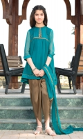 Chiffon Embellished Shirt Paired With Tulip Shalwar