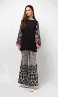 2 Piece Shirt and trouser Chiffon shirt Embroidered sleeves Embellished neckline Fully embroidered raw silk pants
