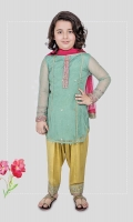 3 piece Shirt, shalwar and dupatta Green net shirt with embroidered on sleeves and neck Yellow grip shalwar with embroidered patti on hem Pink chiffon dupatta Embellished with tilla balls and buttons