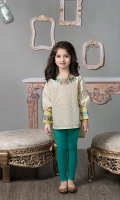2 piece Shirt and Tights Linen screen Printed Shirt with Embroidered Neckline and Patti on Sleeves Green Tights
