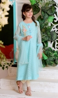 Mint Green Net with Applique Embroidered 3D Motif and Lining Inside, Mint Chiffon Dupatta