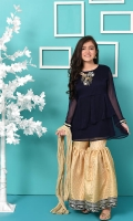Navy Blue Chiffon Top with Hand Adda Work and Lining Inside, Gold Banarasi Gharara with Embroidery and Gold Crush Dupatta
