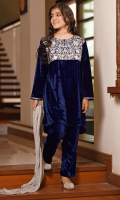 Navy Blue Velvet Top with Embroidery, Navy Blue Velvet Pants and Silver Crush Dupatta