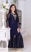 Navy Blue Organza with Hand Adda Work and Lining Inside, Navy Blue Raw Silk Gharara with Embroidery.