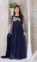 Navy Blue Gold Foil Net with Applique Embroidered 3D Motif and Lining Inside, Gold Jersey Tights and Navy Blue Chiffon Dupatta with Pearl Pico