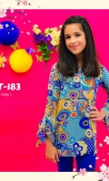 Fabric: Printed Chiffon with Neck Piece