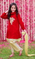 Maroon Velvet Top with 3D Applique Embroidered Motif, Gold Banarasi Straight Pant & Gold Crush Dupatta