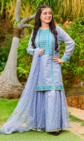 Blue Zari Missouri with Embroidery and Lining Inside, Blue Net Gharara with Foil Print and Lining, Blue Soft Net with Foil Print and Laces