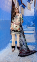 - Printed front, back, and sleeves - Embroidered neckline - 2 embroidered patches  - 2 embroidered borders - 1 3D butterfly patch - Printed pure chiffon dupatta - Dyed trouser