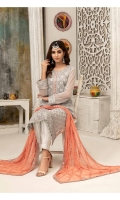 Stylish, Exclusive and Delightful Embroidered Chiffon Semi-Stitched Designs with Exclusive Fancy Dupattas.