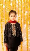 Hand Embellished Organza Shirt Hand Embellished Organza Jacket Chiffon Dupatta Raw silk Trouser
