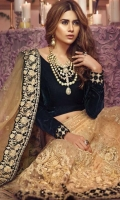 3 Piece Embroidered Chiffon Suit