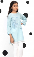 Embroidered Raglan Flared Top With Lace And Gathered Sleeves, Fabric: Dobby
