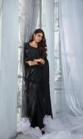 Blouse - Pure Russian Raw Silk with Dori thread & Stone Embroidery Saree - Pure Chiffon