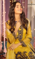 """Front embroidered damaan border 24"""" Embroidered chaak 4 corners (R/L front and back) Embroidered thin border 5 meter Embroidered center panels on shirt 1.25 yard Plain dyed organza for back and sleeves 2.25 meter Dyed raw silk for trouser 2.5 meter Dyed woven organza dupatta 2.5 meter"""