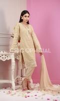 Premium Embroidered Chiffon with Mirror Detailed Embroidered Sleeves paired up with Mirro Detailed Border Dopatta with Rawsilk Pants