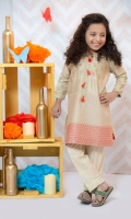 Pure cotton net shirt with embroidered and sleeves including banarsi trouser.