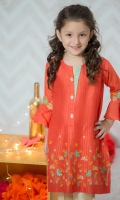 Pure cotton net shirt with embroidered front & sleeves including banarsi trouser.