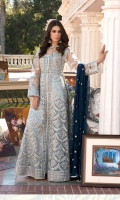 Embroidered net goon chiffon duppata Embroidered daman patches grip troser and accessories