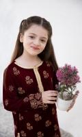 Fabric: Velvet shirt and silk shahrara