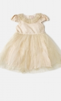 Oh-So-Pretty And Perfect For Birthday Parties, Our Gold Dress Features Frill In Luxurious Mesh And In The Centre Of The Waist Sits A Pearl Lace Adds Beauty In This Dress. Back Opening Gold Mesh Dress