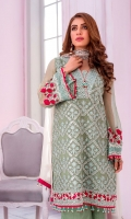 Embroidered Chiffon Front Plain Chiffon Back Embroidered Chiffon Sleeves Plain Chiffon Dupatta Contrast Embroidered Organza Border for Front & Back Embroidered Organza Border for Neckline Embroidered Silk Border for Dupatta Contrast Dyed Trouser