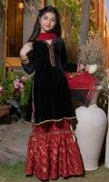 Black Velvet paneled top. V neckline, handwork on sleeves and neckline. Red Banarsi Gharara with lace. Red Dupatta.