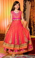Panel shirt with handwork and embroidery borders on front floral net lehenga with borders. dupatta with embroidery borders and lace finishings,