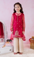 Embellished Net Panelled Kurta Paired with Cotton Silk Lining