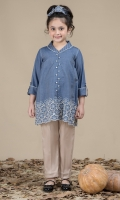 Embroidered Tensil Top with Collar
