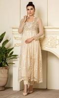 Embroidered net overlap long shirt with box pleats, embroidered yoke with handwork and net sleeves with embroidery at edge.