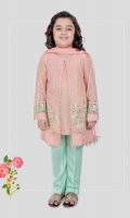 3 piece Gown, trouser and dupatta Peach net gown with embroidered sleeves and hem Grip under shirt with green grip trouser Peach net dupatta Embellished with pearls