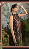 Printed shirt Dyed trouser Printed chiffon dupatta Embroidered neckline patti Embroidered neck motif Embroidered patti