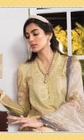 Printed shirt Dyed trouser Printed chiffon dupatta Embroidered neckline patti Embroidered ghera patti