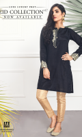 Silk Ready To Wear Shirt Embroidered Neckline Embroidered Sleeves Plain Back
