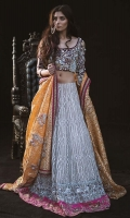 Blouse Lengha- Organza Fabric, with Gota work, Zardozi Crystal Borders. Skirt (sold separately) Dupatta (sold separately)