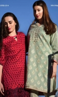 Chic embroidered shirt with exquisite motives and border and a plain dyed cotton trouser.