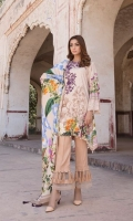 Biscuit color kameez with a goreous printed back,sleeve and dupatta and embroidery neck patch on organza