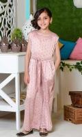 Printed Georgette Jumpsuit