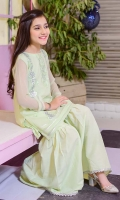 Mint Chiffon with Sequence Embroidery and Lining Inside, Mint Raw Silk Gharara with Gota Lace, Mint Chiffon Dupatta with Pearl Pico