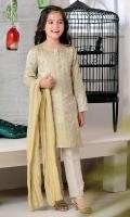 Light Grey Cotton Silk with Screen Print and Hand Adda Work on Placket, Light Grey Raw Silk Pants and Gold Crush Dupatta
