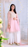 Tea Pink Chiffon with Embroidery and Lining Inside, White Zari Net Gharara with Lining, Tea Pink Chiffon Dupatta with Embroidery