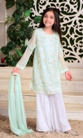 Mint Chiffon Fully Embroidered with Lining Inside, White Boski Linen Gharara and Mint Chiffon Dupatta with Pearl Pico