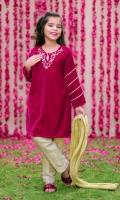 Hot Pink Velvet Top with Hand Adda Work, Gold Banarasi Straight Pant & Gold Crush Dupatta