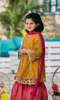 tassels-gul-e-rangeen-2019-18
